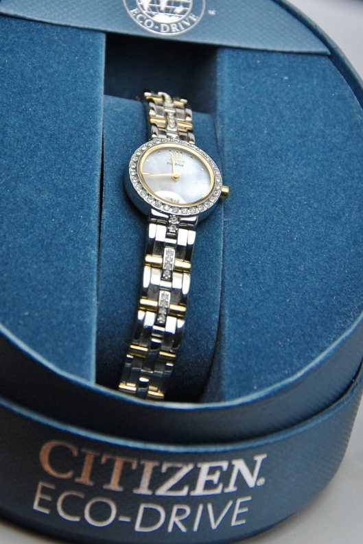 Citizen Eco Drive Watch 2 Tone Ladies